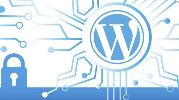 ¿WordPress es seguro?